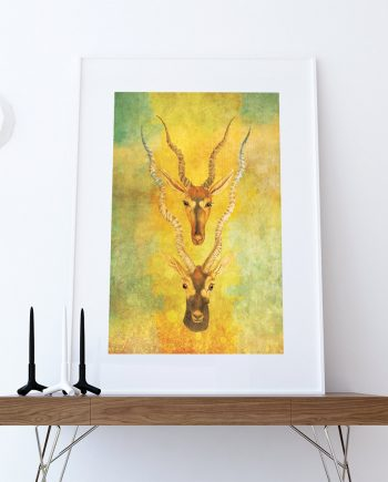 Vintage Antelope Print Antelope Antlers Print Wall Art - Giclee Print on Cotton Canvas and Paper Canvas