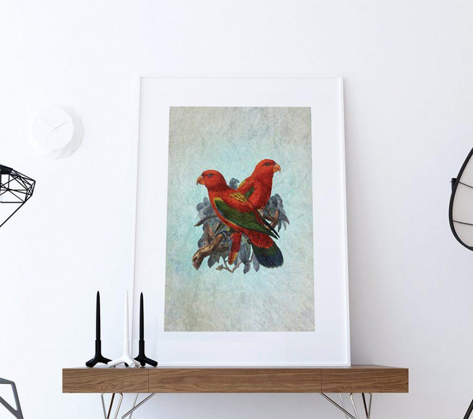 Vintage Bird Print Antique Bird Print Vintage Bird Prints illustrated bird print Bird wall decor natural history wall art Cotton Canvas