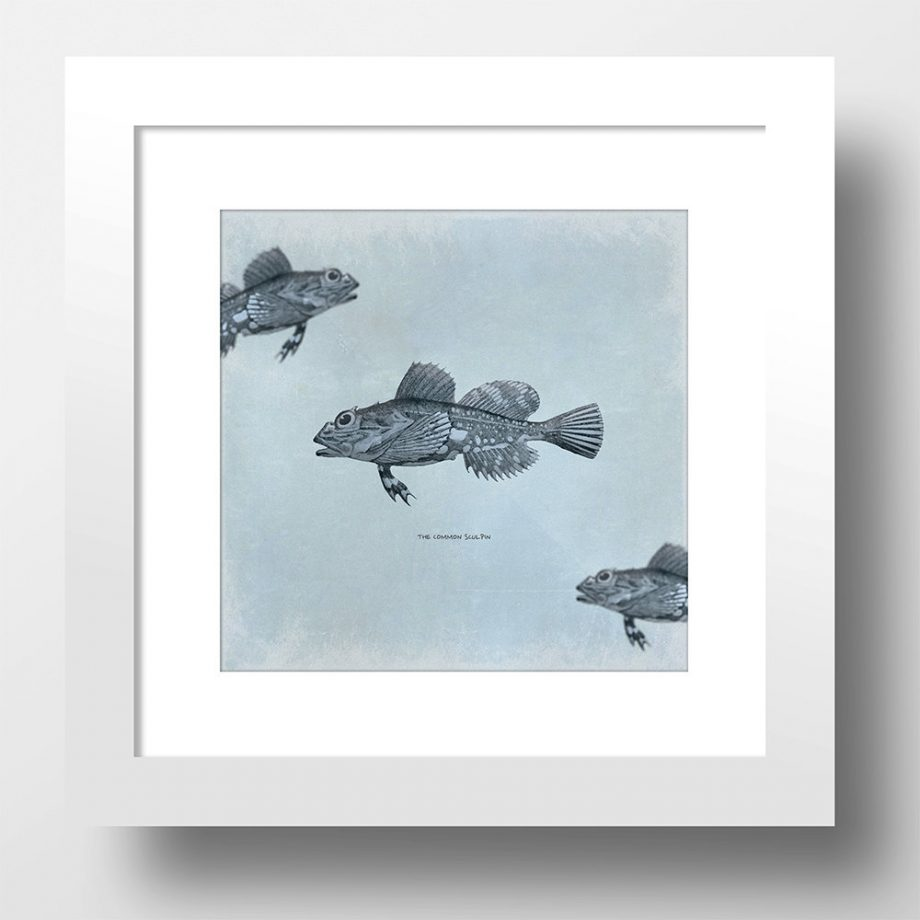 Vintage Fish Print 24x24 Vintage Beach Art Print Vintage Nautical Decor Ocean Wall Art - Giclee Print on Cotton Canvas and Satin Photo Paper