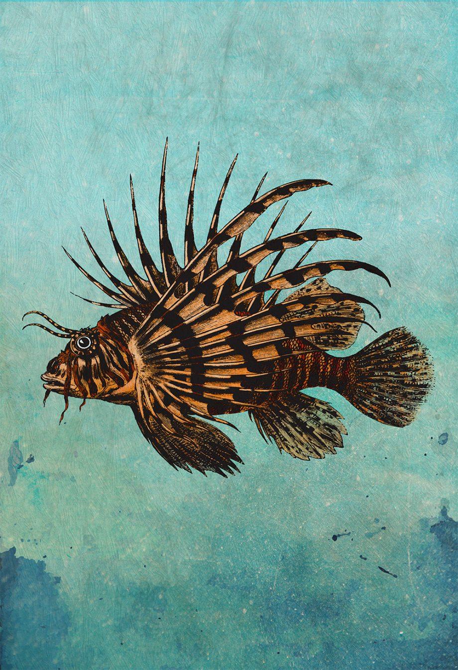 "Vintage Lion Fish Print 18x24"" 24x36"" Victorian Vintage Beach Art Print Vintage Nautical Decor Ocean Wall Art Giclee Print on Canvas & Satin"