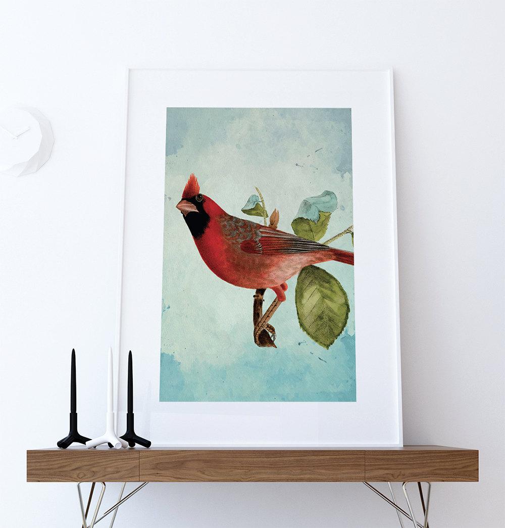Vintage Red Cardinal Print Antique Bird Print Prints