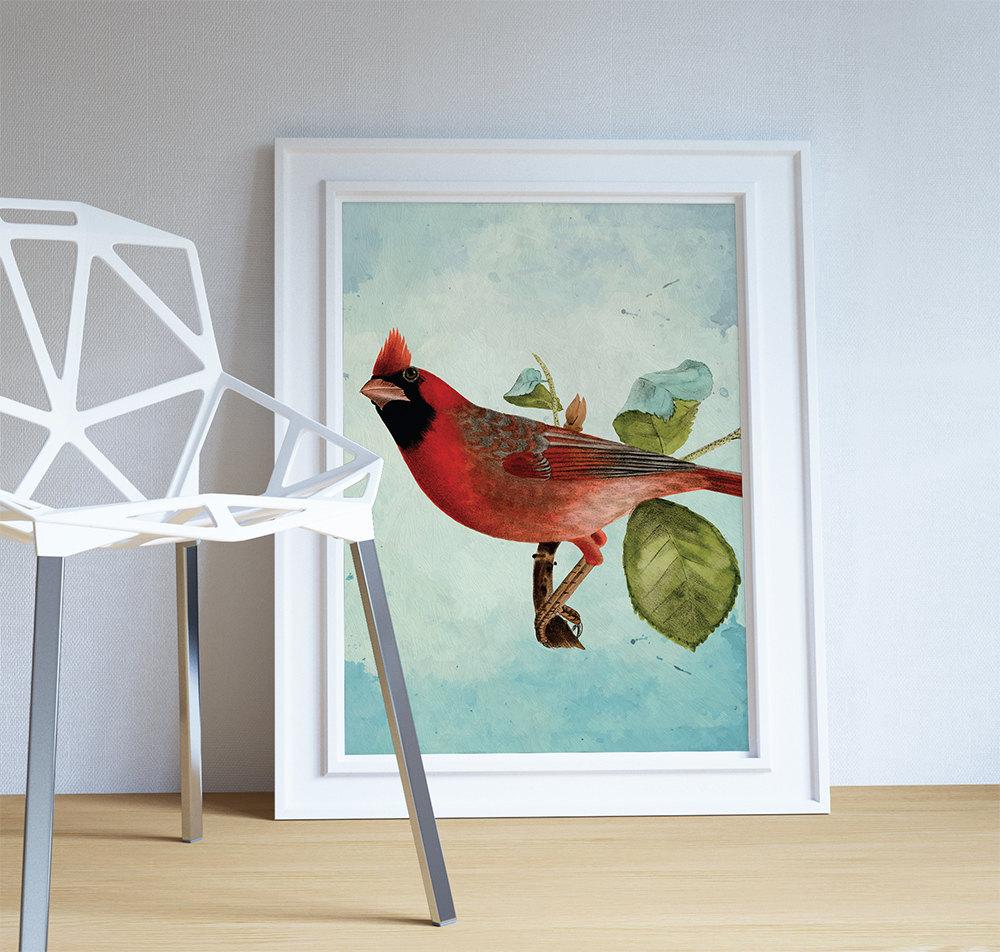 Vintage Red Cardinal Print Antique Bird Print Prints Home Decorators Catalog Best Ideas of Home Decor and Design [homedecoratorscatalog.us]