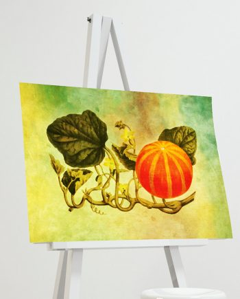 Vintage Victorian Pumpkin Print Kitchen Fall Decor Giclee Print on Cotton Canvas and Paper Canvas Poster Home Wall Art