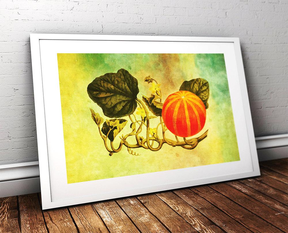 Vintage Victorian Pumpkin Print Kitchen Fall Decor Giclee Print on ...