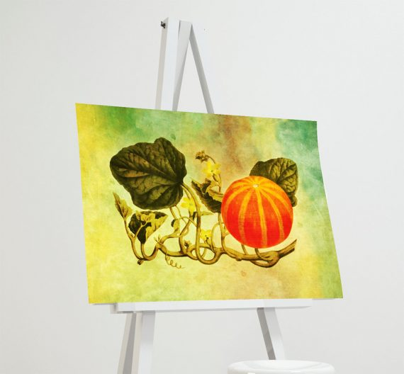 Vintage Victorian Pumpkin Print Kitchen Fall Decor Giclee Print on Cotton Canvas and Satin Photo Paper Poster Home Wall Art