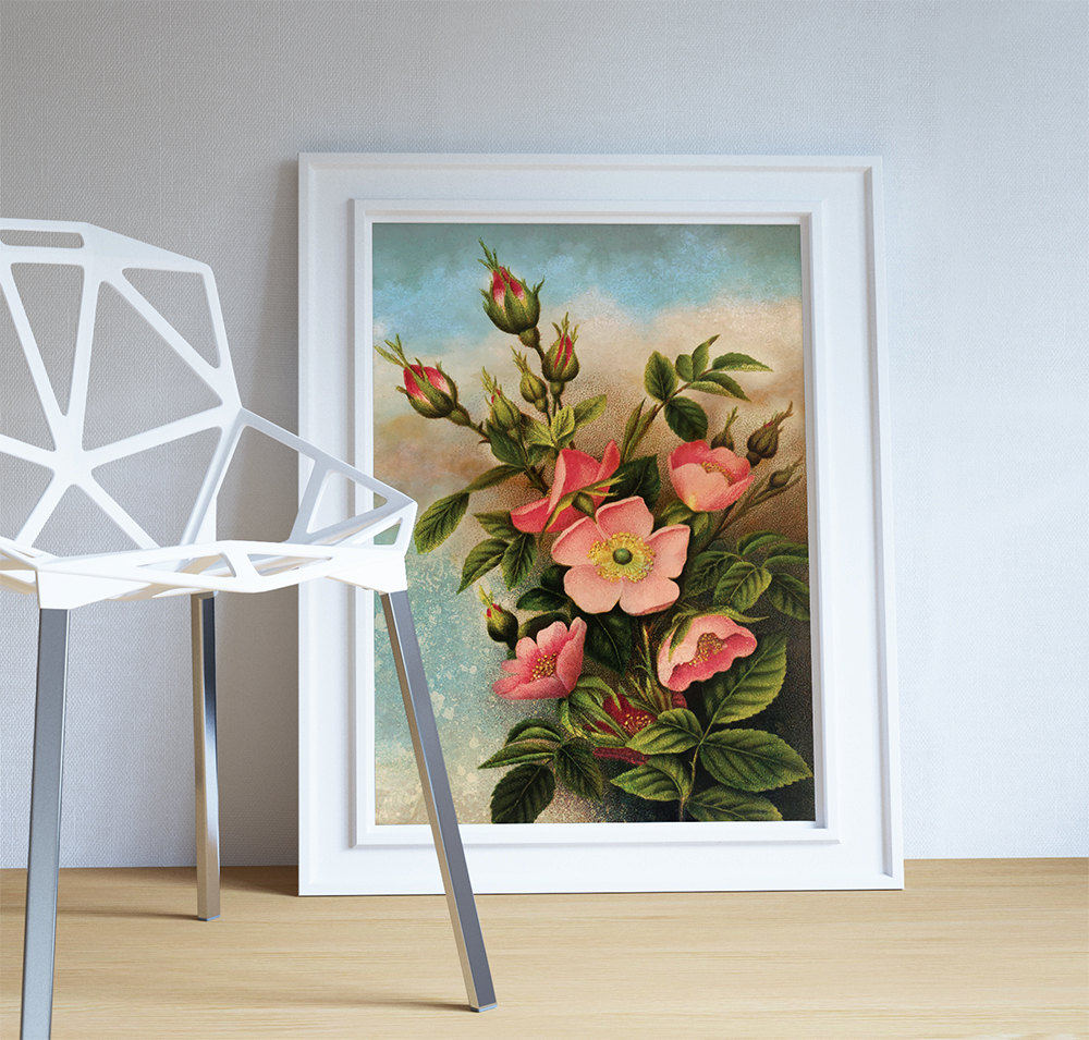 Vintage Wild Roses Print Art Rose Gift Botanical